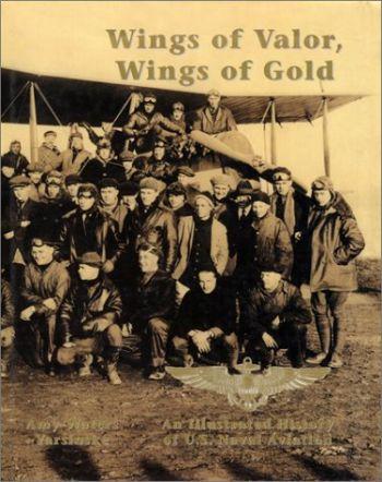 Wings of Valor, Wings of Gold als Buch (gebunden)