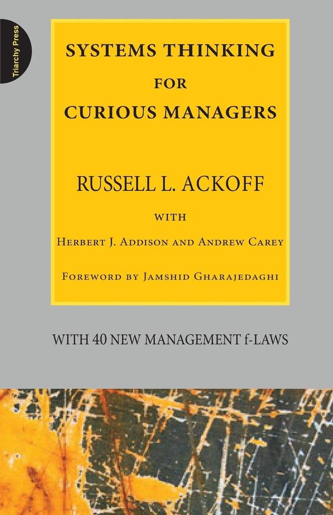 Systems Thinking for Curious Managers als Buch (kartoniert)