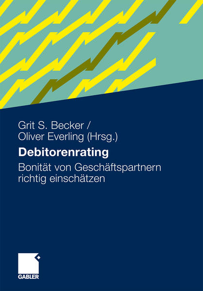 Debitorenrating als Buch (kartoniert)