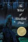 The Witch of Blackbird Pond