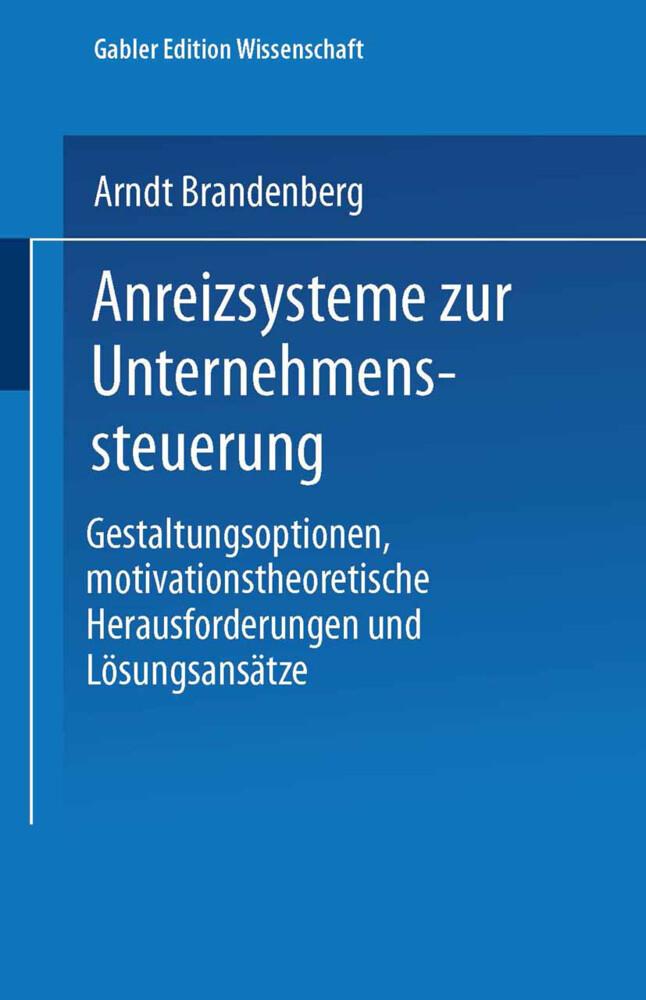 Anreizsysteme zur Unternehmenssteuerung als Buch (kartoniert)