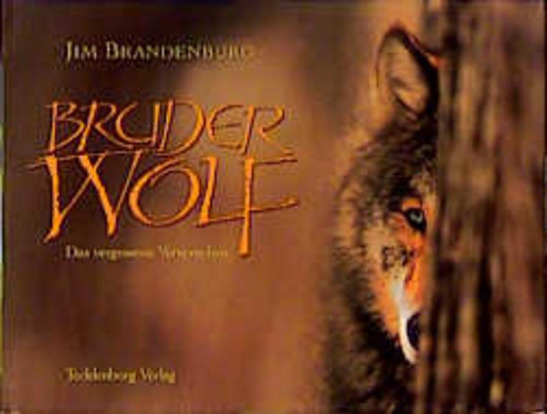 Bruder Wolf als Buch (gebunden)