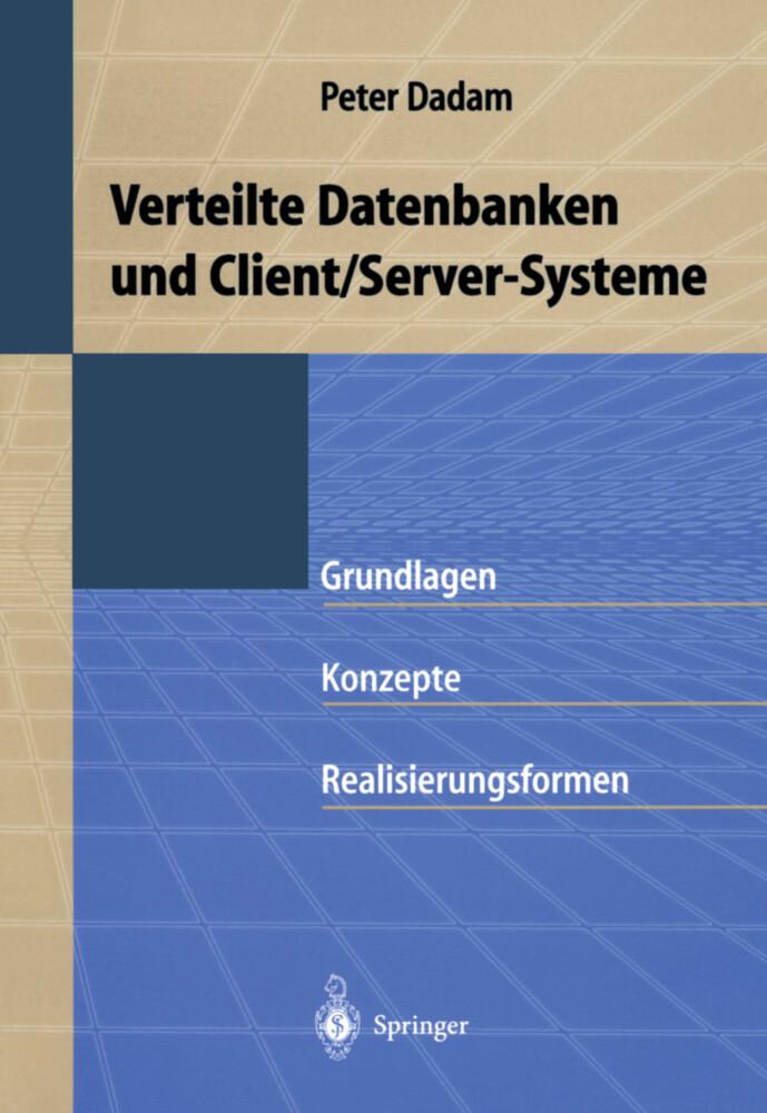 Verteilte Datenbanken und Client/Server-Systeme als Buch (kartoniert)