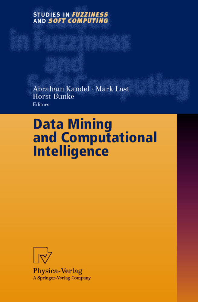 Data Mining and Computational Intelligence als Buch (gebunden)