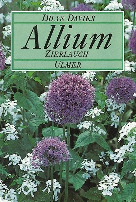 Allium, Zierlauch als Buch (gebunden)
