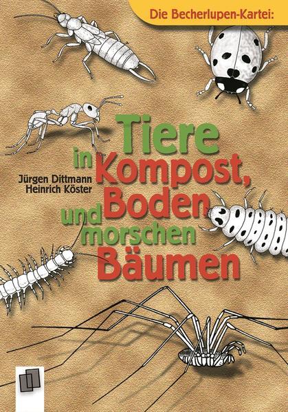 Tiere in Kompost, Boden und morschen Bäumen als Buch (kartoniert)