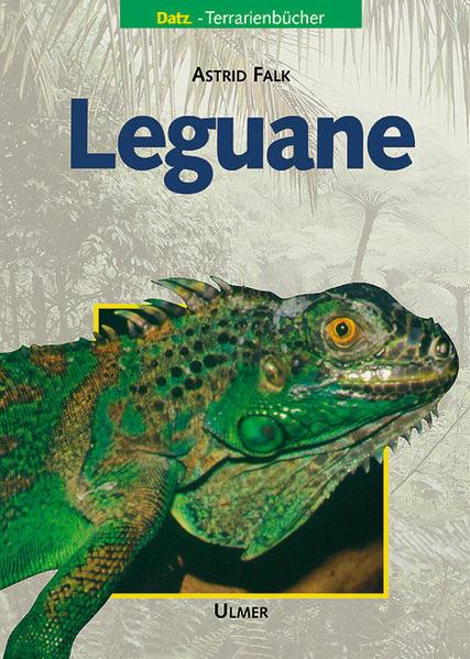 Leguane als Buch (gebunden)