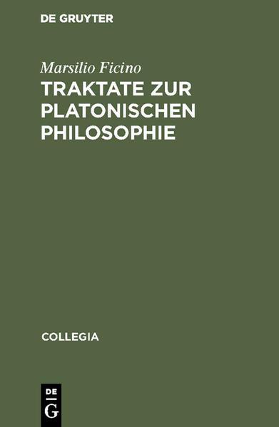 Traktate zur Platonischen Philosophie als Buch (gebunden)