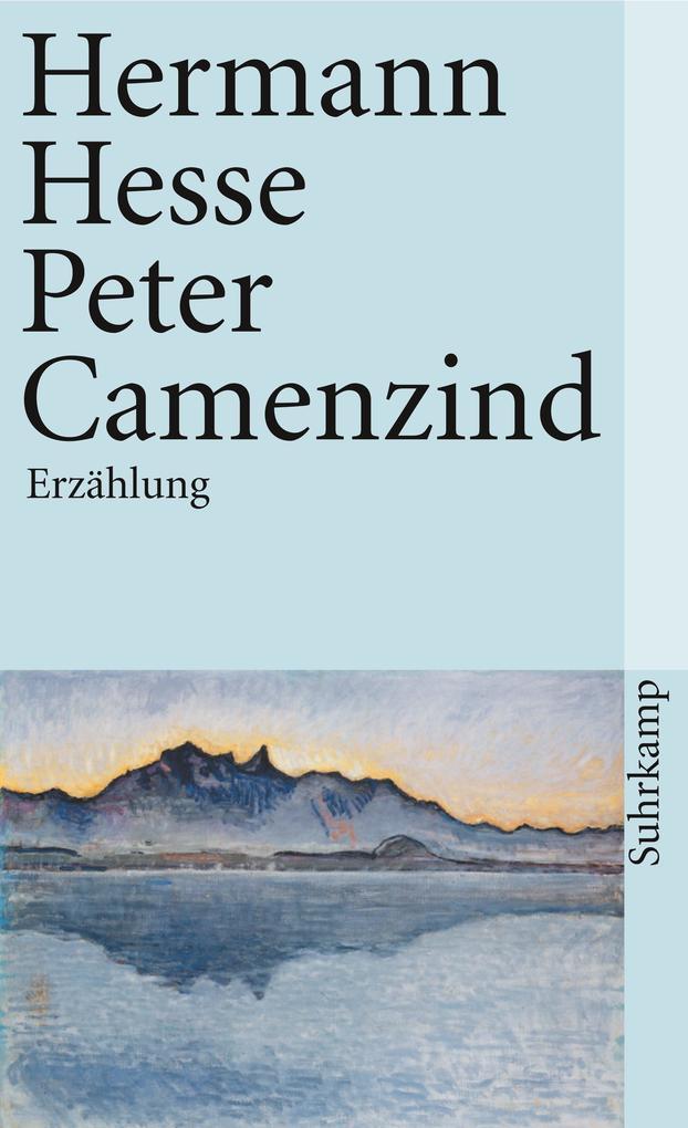 Peter Camenzind als Taschenbuch