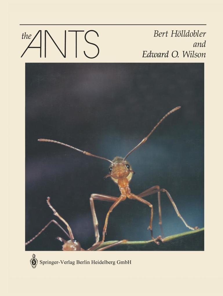 The Ants als Buch (gebunden)