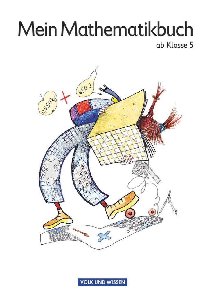 Mein Mathematikbuch 5./6. Schuljahr Schülerbuch als Buch (kartoniert)
