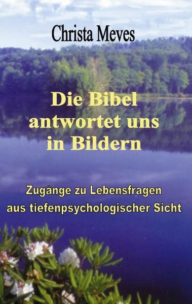 Die Bibel antwortet uns in Bildern als Buch (kartoniert)