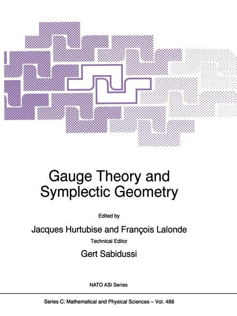 Gauge Theory and Symplectic Geometry als Buch (kartoniert)
