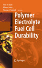Polymer Electrolyte Fuel Cell Durability
