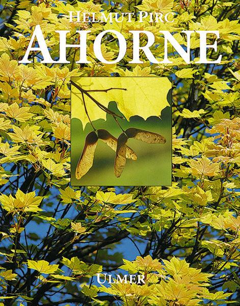 Ahorne als Buch (gebunden)