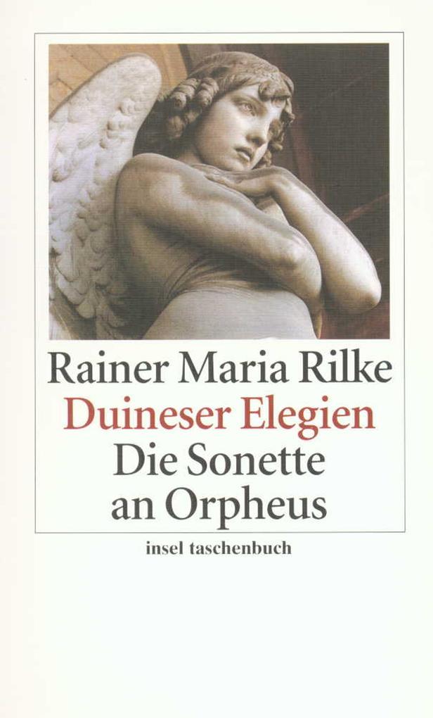 Duineser Elegien / Die Sonette an Orpheus als Taschenbuch