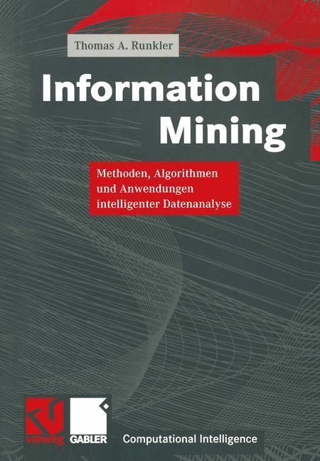Information Mining als Buch (gebunden)