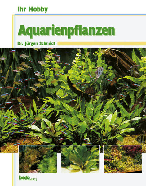 Ihr Hobby Aquarienpflanzen als Buch (gebunden)