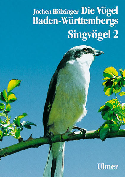 Singvögel 2 als Buch (gebunden)