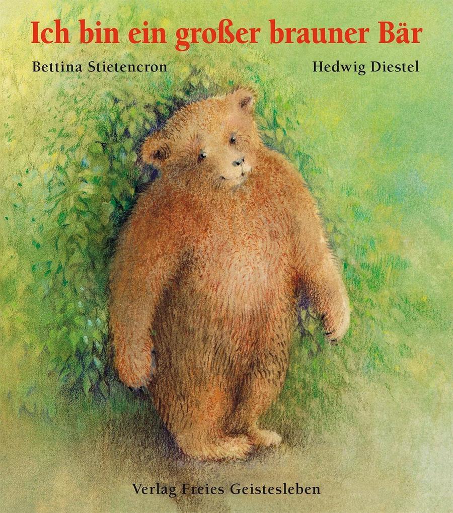 Ich bin ein großer brauner Bär als Buch (gebunden)