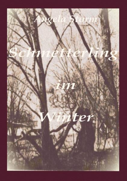 Schmetterling im Winter als Buch (kartoniert)