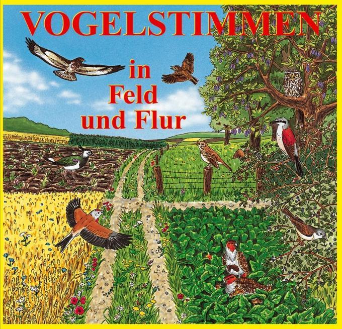 Vogelstimmen 2 in Feld und Flur. CD als Hörbuch CD