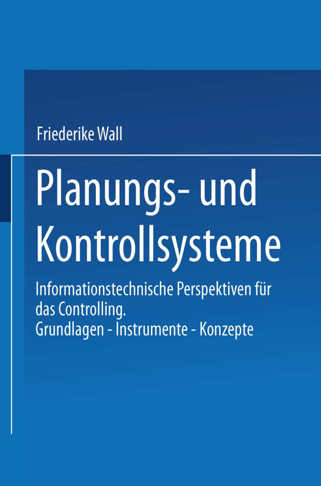 Planungs- und Kontrollsysteme als Buch (kartoniert)