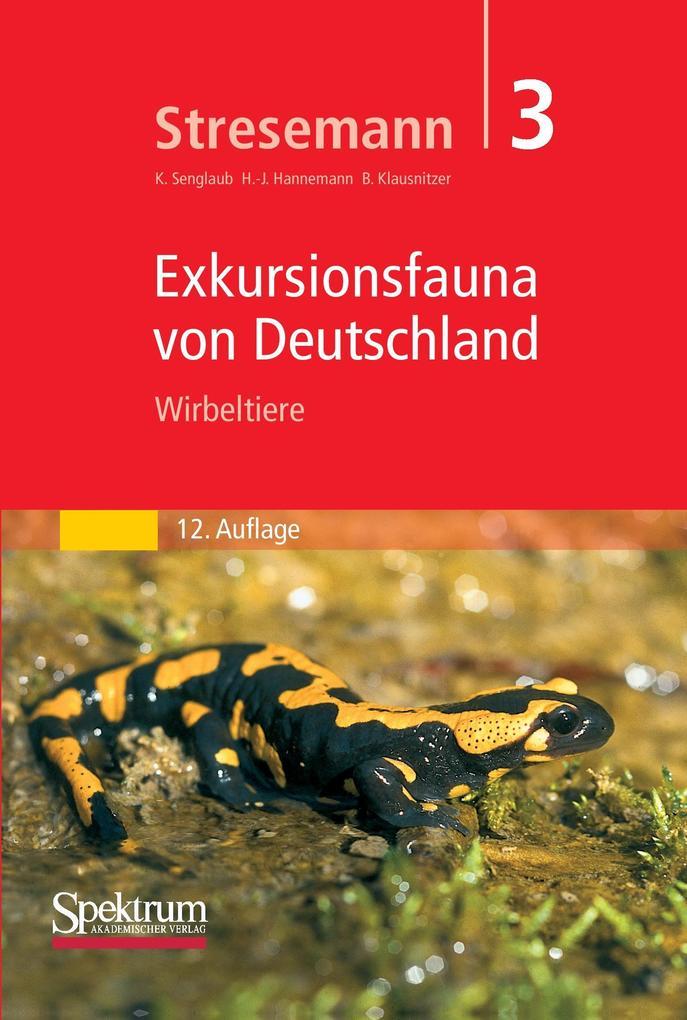 Stresemann - Exkursionsfauna von Deutschland. Band 3: Wirbeltiere als Buch (gebunden)
