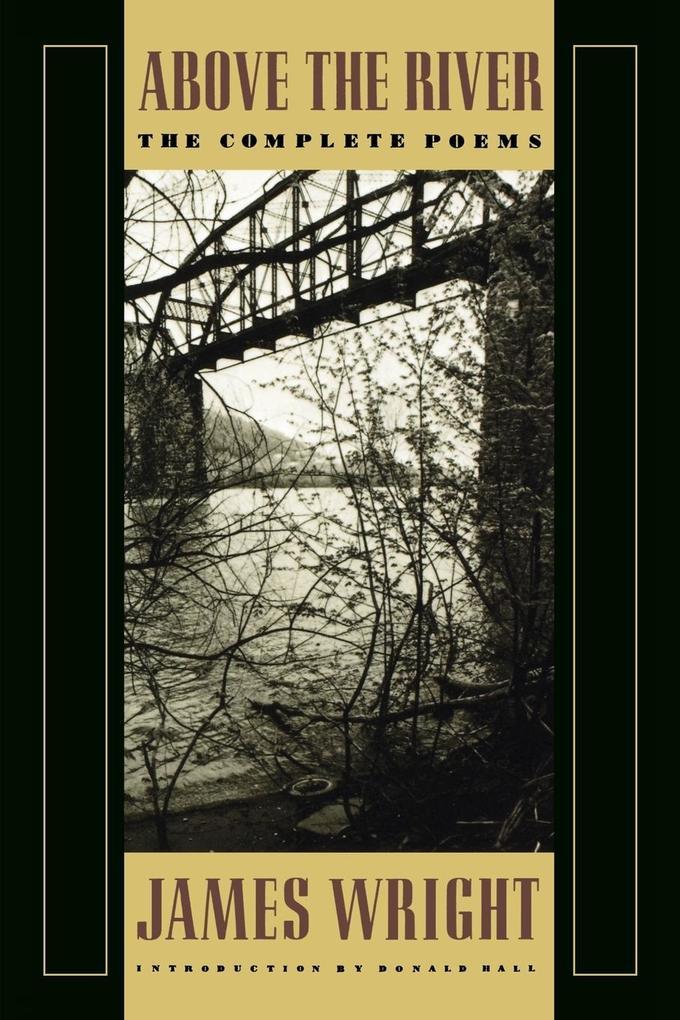 Above the River als Taschenbuch