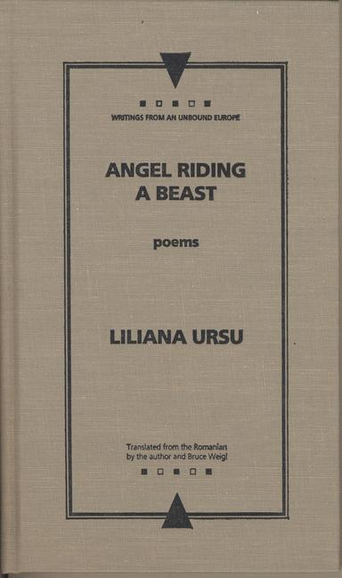 Angel Riding a Beast als Taschenbuch
