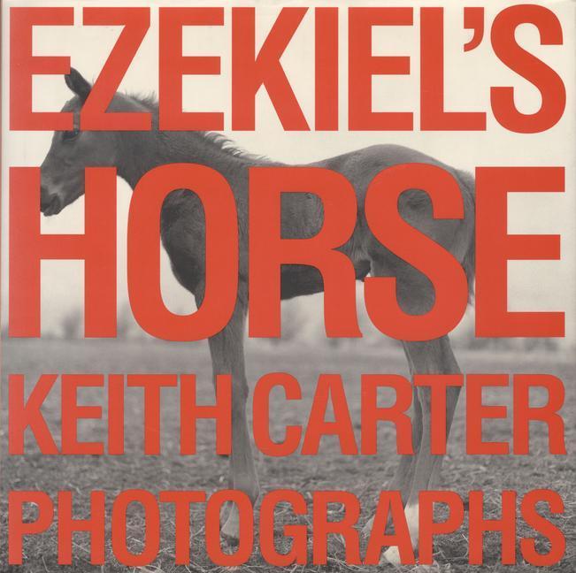 Ezekiel's Horse als Buch (gebunden)