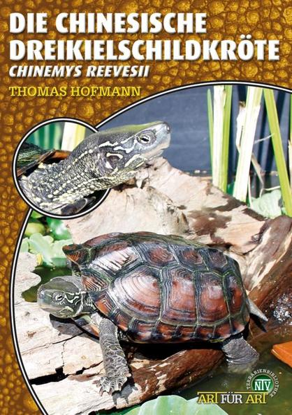Art für Art: Die Chinesische Dreikielschildkröte als Buch (kartoniert)