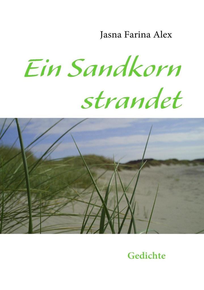 Ein Sandkorn strandet als eBook epub
