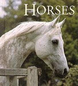 Horses als Buch (gebunden)