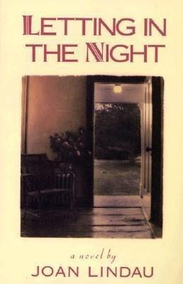 Letting in the Light als Buch (gebunden)