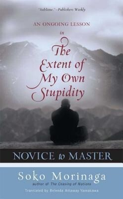 Novice to Master: An Ongoing Lesson in the Extent of My Own Stupidity als Buch (gebunden)