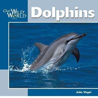 Dolphins als Taschenbuch