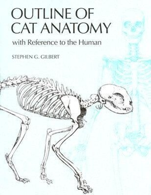Outline of Cat Anatomy with Reference to the Human als Taschenbuch