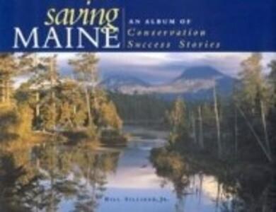 Saving Maine als Buch (gebunden)