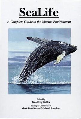 Sealife als Buch (gebunden)