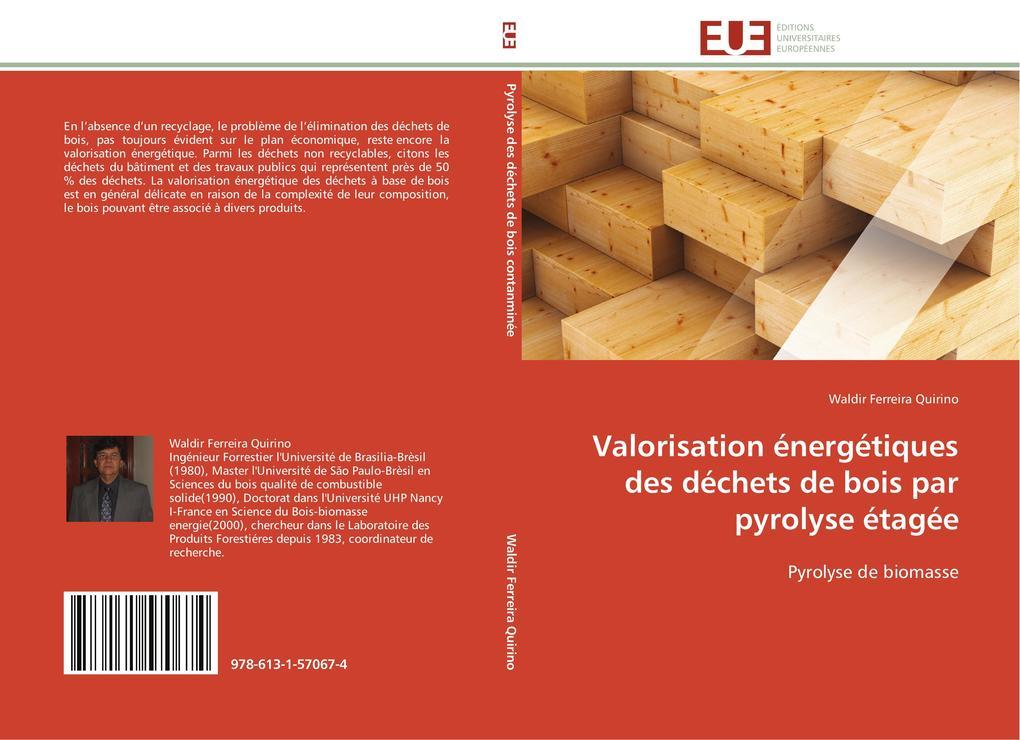 Valorisation Énergétiques Des Déchets de Bois Par Pyrolyse Étagée als Taschenbuch