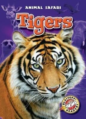 Tigers als Buch (gebunden)