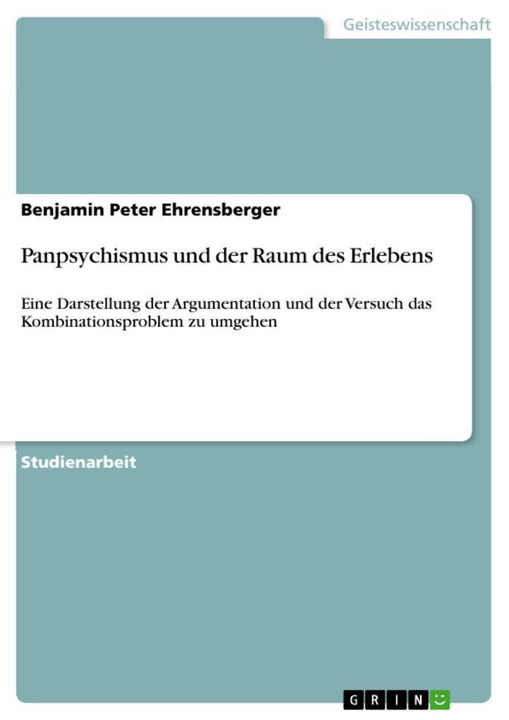 Panpsychismus und der Raum des Erlebens als eBook epub