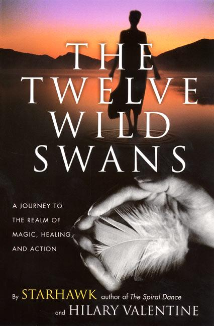 The Twelve Wild Swans: A Journey to the Realm of Magic, Healing, and Action als Taschenbuch