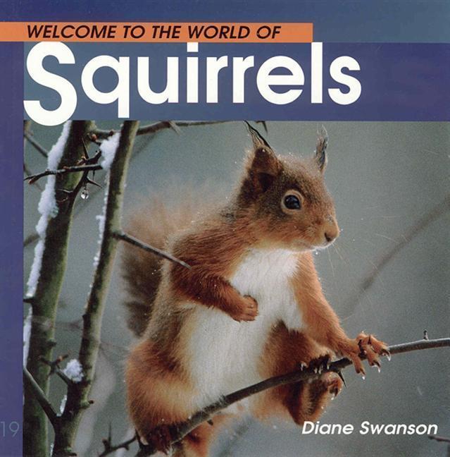Welcome to the World of Squirrels als Taschenbuch