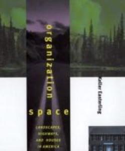 Organization Space als Buch (kartoniert)