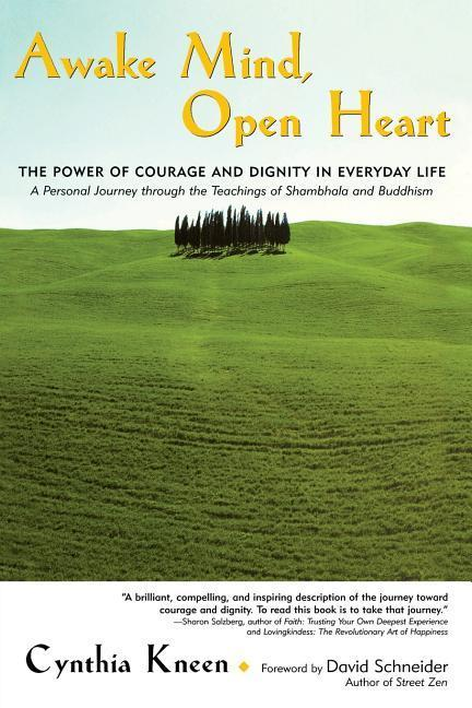 Awake Mind, Open Heart: The Power of Courage and Dignity in Everyday Life als Taschenbuch