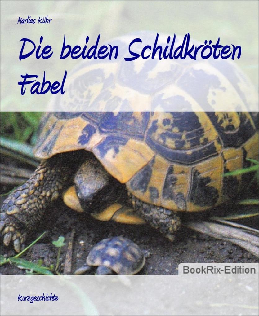 Die beiden Schildkröten als eBook epub
