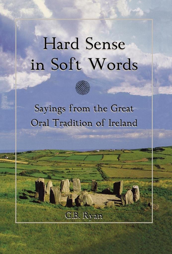 Hard Sense in Soft Words als Buch (gebunden)