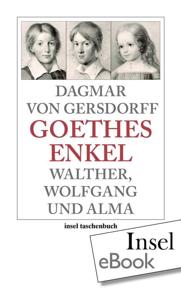 Goethes Enkel als eBook epub